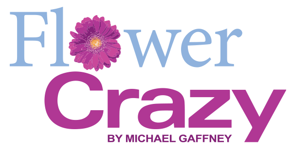 Flower Crazy by Michael Gaffney